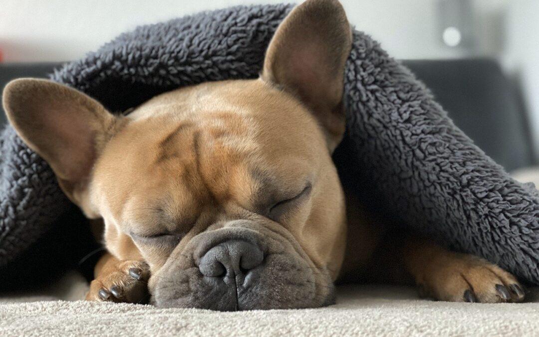 Wie du auch im Sommer erholsam schlafen kannst